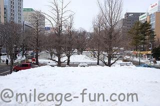 雪祭り解体5